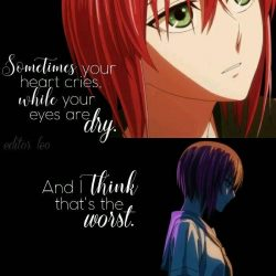 Anime: the ancient magus bride