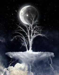 Mystical: Magical: All is possible with a thought a wish a desire and love….