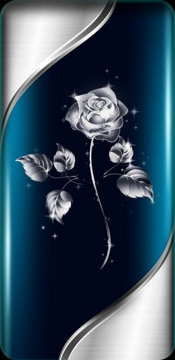 Silver Rose…
